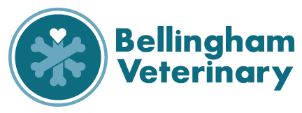 Bellingham Veterinary